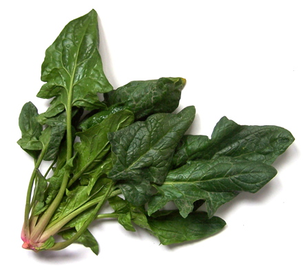 菠菜的营养与功效